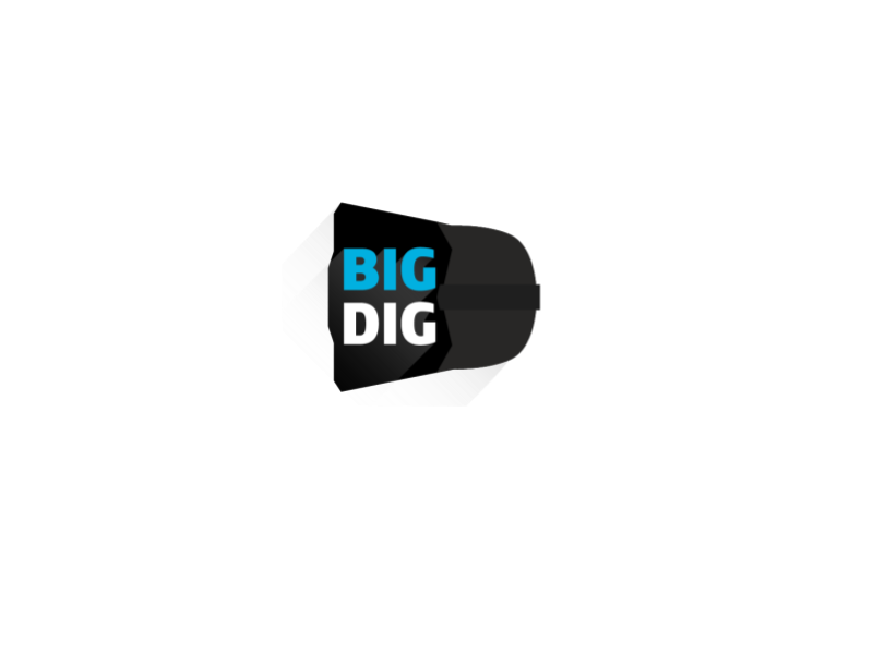 Big Digitals | Mobile & Web Development Logo