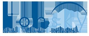 LionSky Logo