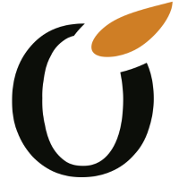 Liquid IT Logo
