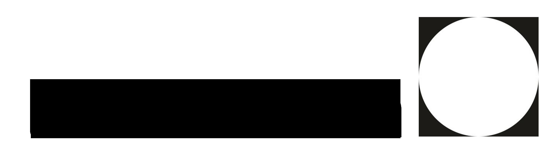 littlemoon.studio Logo