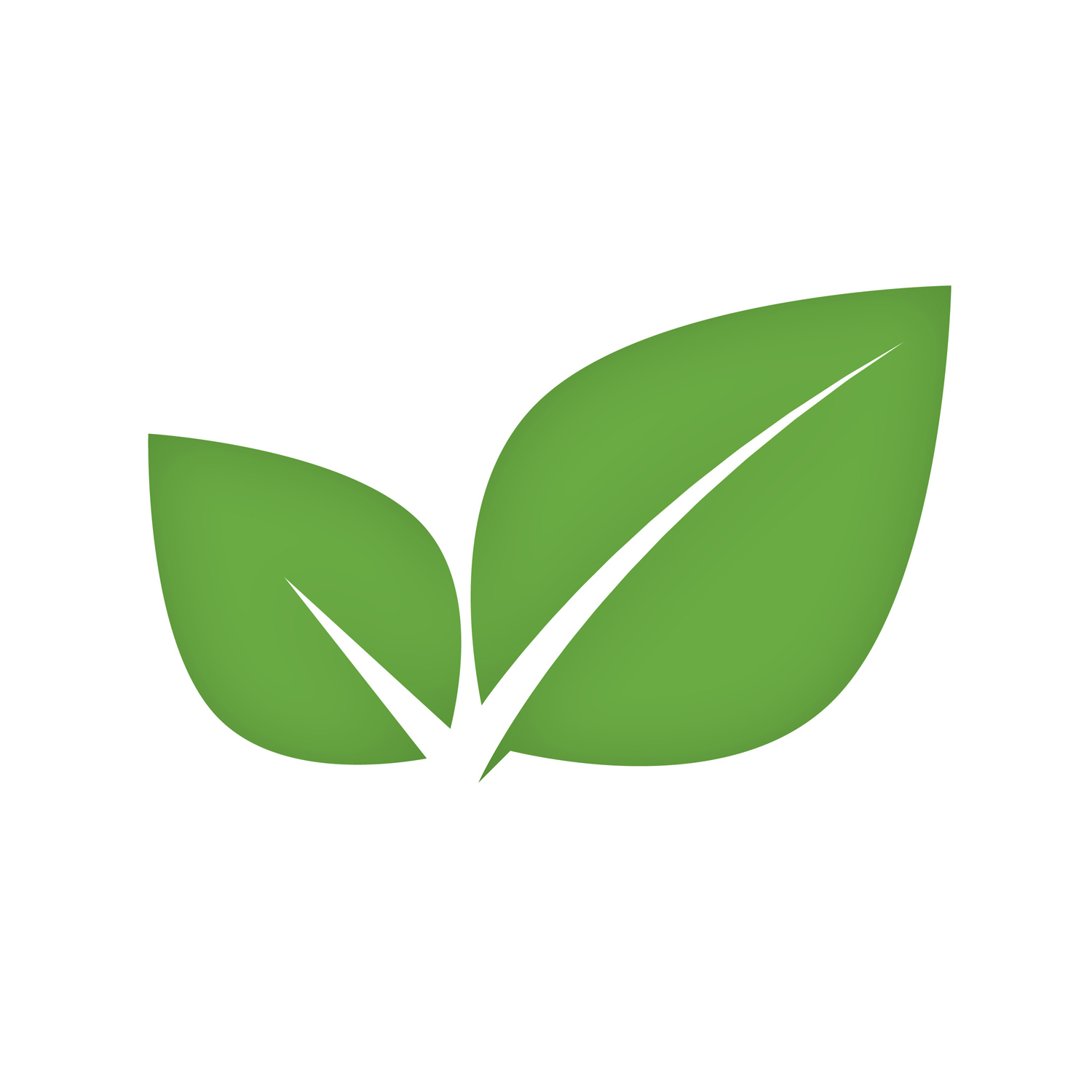 Mint Software Logo