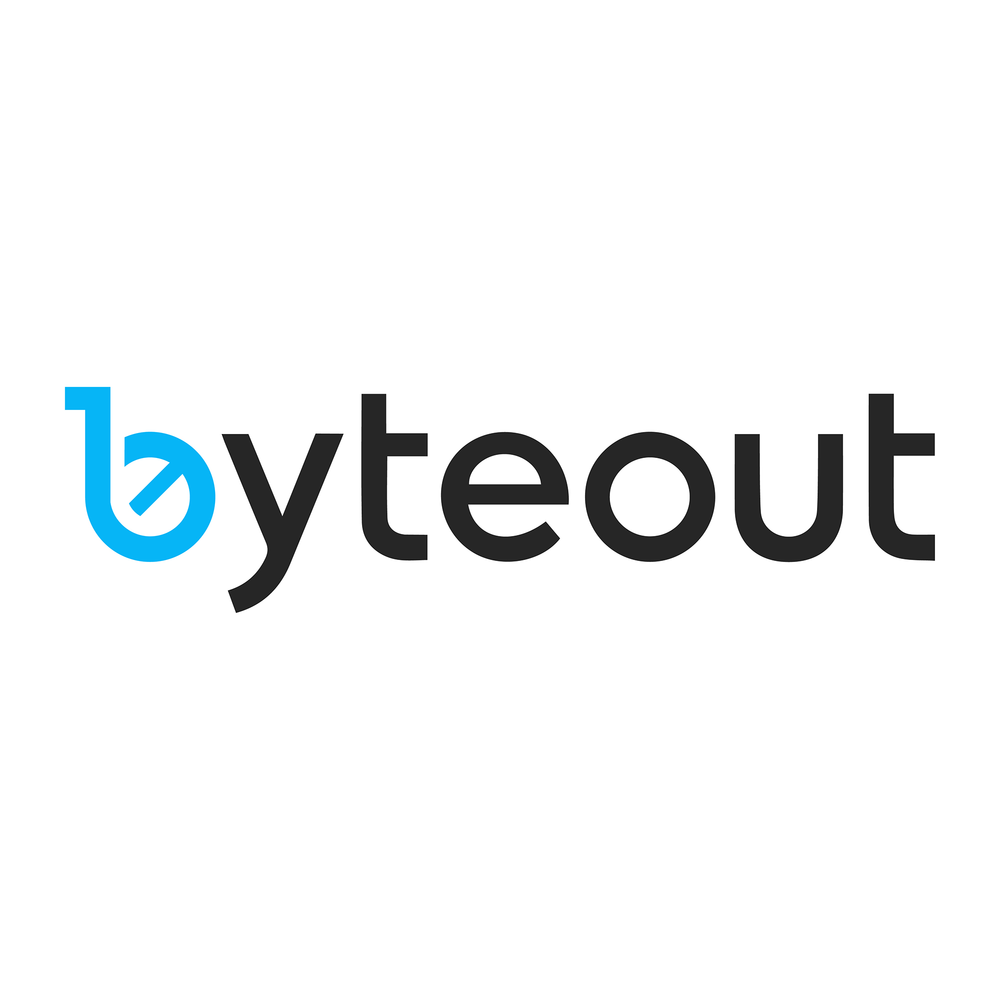Byteout Software Logo