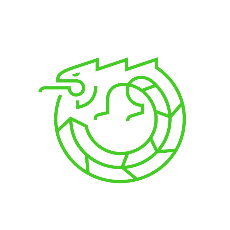 9e6988439d2126 Iguana Studio Client Reviews | Clutch.co