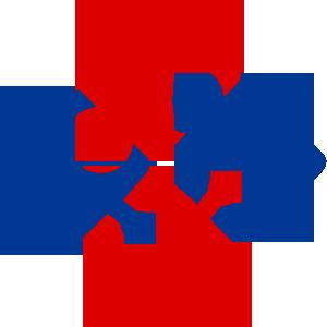 Prologic Technologies Logo