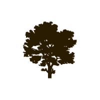 Mapleton Hill logo