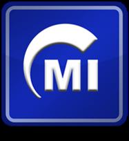 Massive Insights Inc. Logo