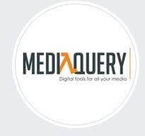 media query Logo