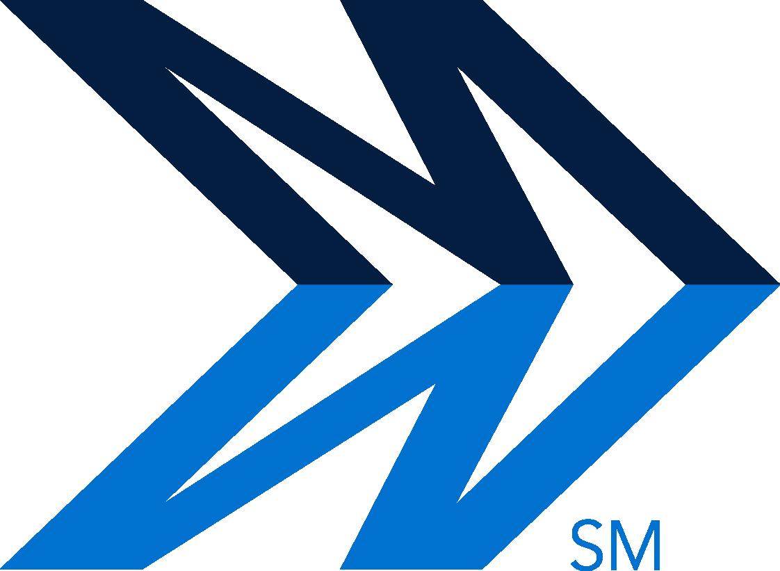 Mindsight Logo