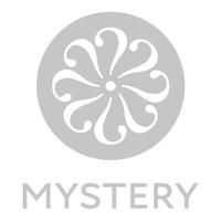 Mystery Ltd Logo