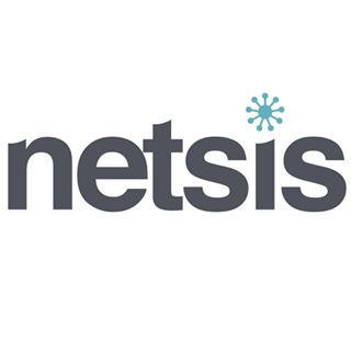 Netsis Technology Logo