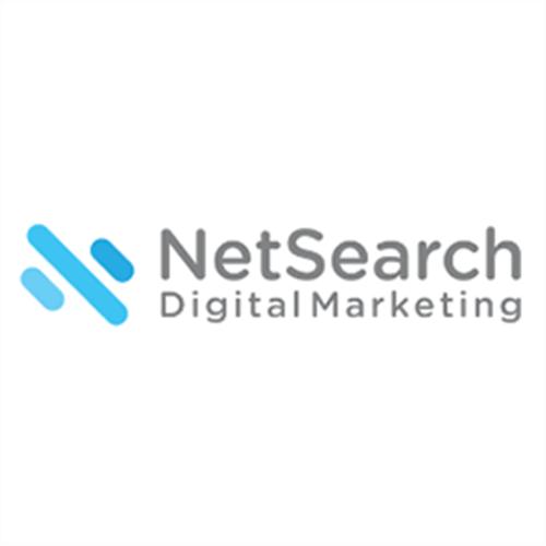 Net Search Logo