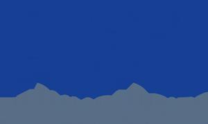 NexOne Technologies Logo