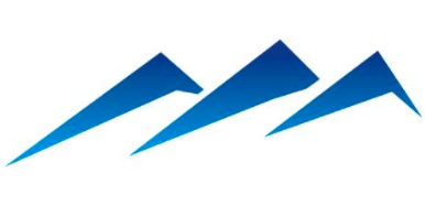 NG Logic Logo