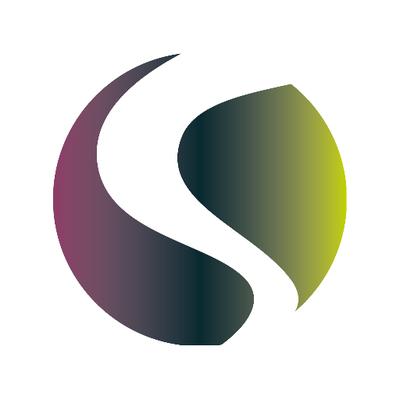Northern Light Media Logo