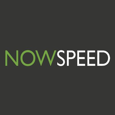 Nowspeed Marketing Logo