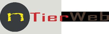 nTierWeb Logo