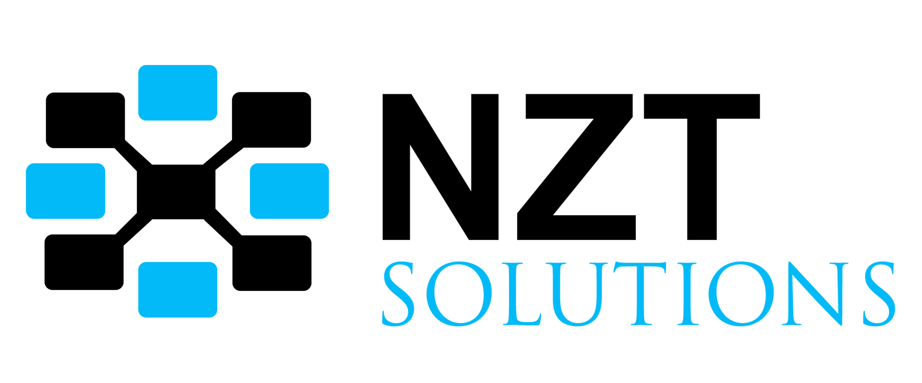 NZT Solutions Pvt. Ltd. - Out of Business Logo