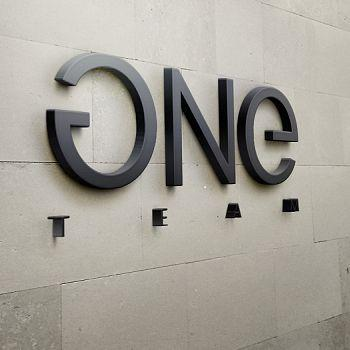 OneTeam Logo