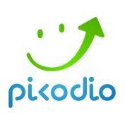 Picodio Digital Agency