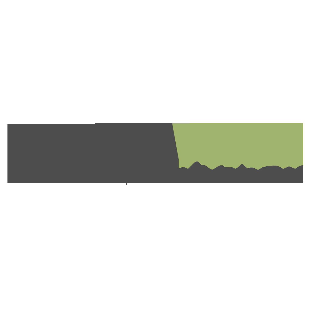 PrestaPros Logo