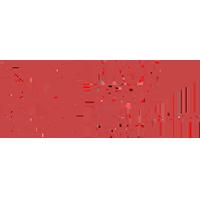 Promwad Logo