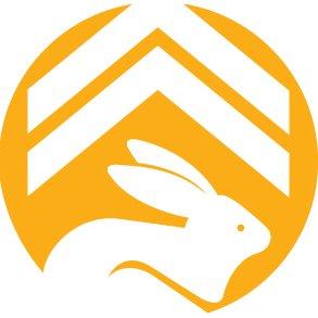 RankRabbit SEO Logo