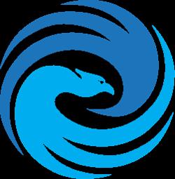 R/CS Logo