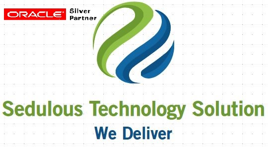 Sedulous Tech Solutions LLC Logo
