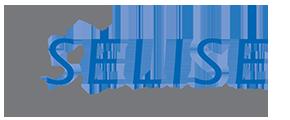 Secure Link Services AG Logo