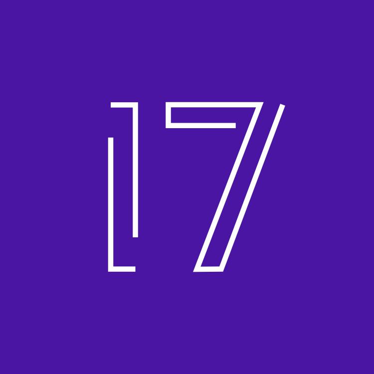 17 Web Dev Logo