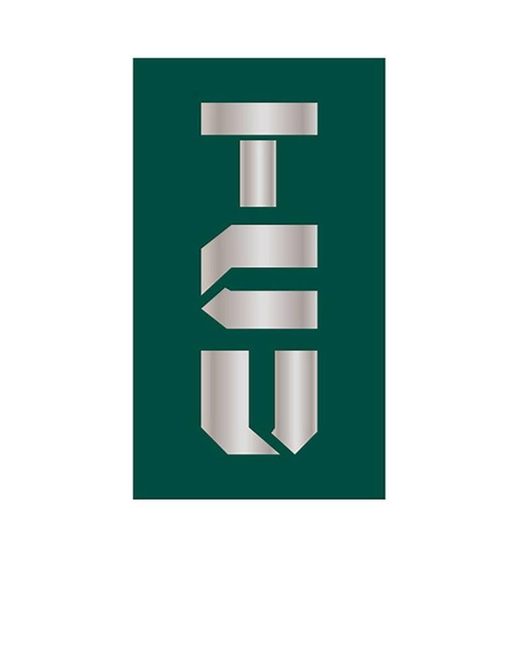 T C U Consulting Logo