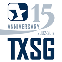 Texas Systems Group Logo