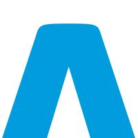 The Flag Logo