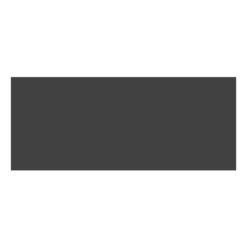 THECON SRL Logo