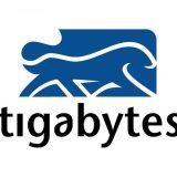 Tigabytes Logo