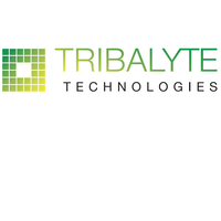 Tribalyte Technologies Logo