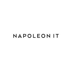 Napoleon IT Logo