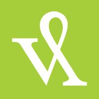 Visible Logic Logo