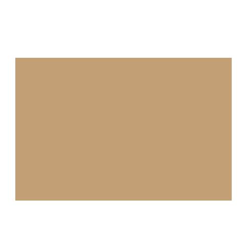WDIP Logo