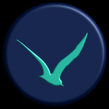 Seahawk Media Group