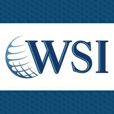 WSI Digital Experts Logo