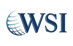 WSI Elevated Digital Logo