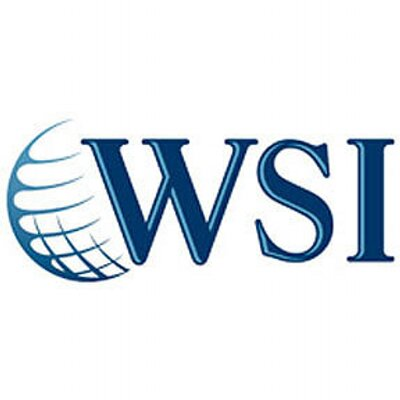 WSI World Logo