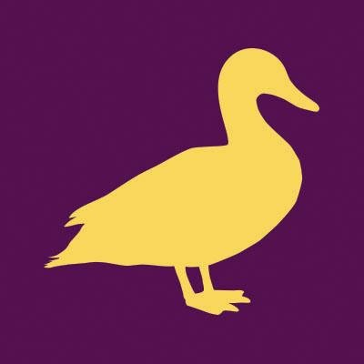 Yellow Duck Marketing Logo