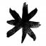 Tuna Fish Studio Logo
