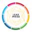 Lead Image Logo