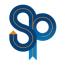 SurePath Wealth Management Logo