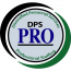 DPS Pro & Diversified Personnel Services logo