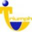 Triumph Staffing logo