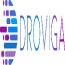Droviga Inc Logo